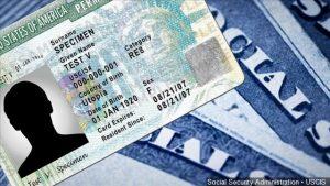 Tener un documento falso significa la deportación