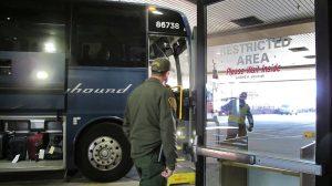 Greyhound no estaba obligada a permitir que agentes de inmigración subieran a sus autobuses