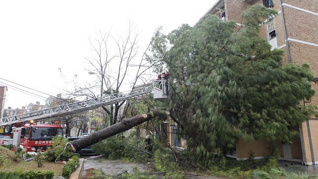 Empresas de servicios de deben responsabilizar por temporales